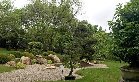 Exkurze do botanické zahrady vPraze